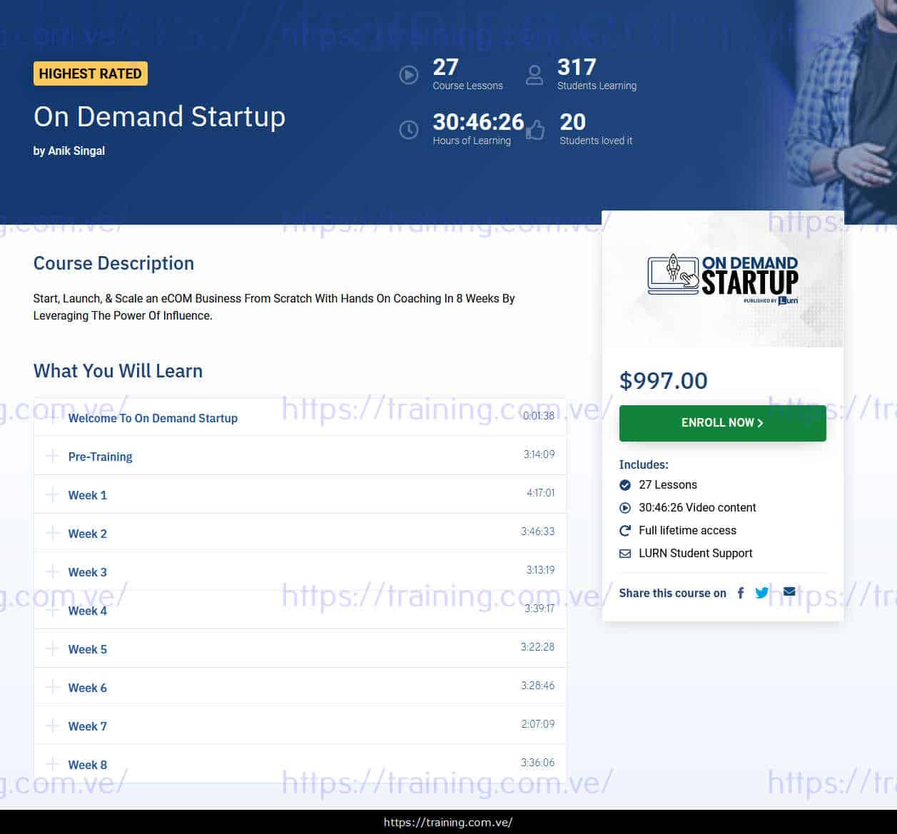 On Demand Startup by Anik Singal sales page