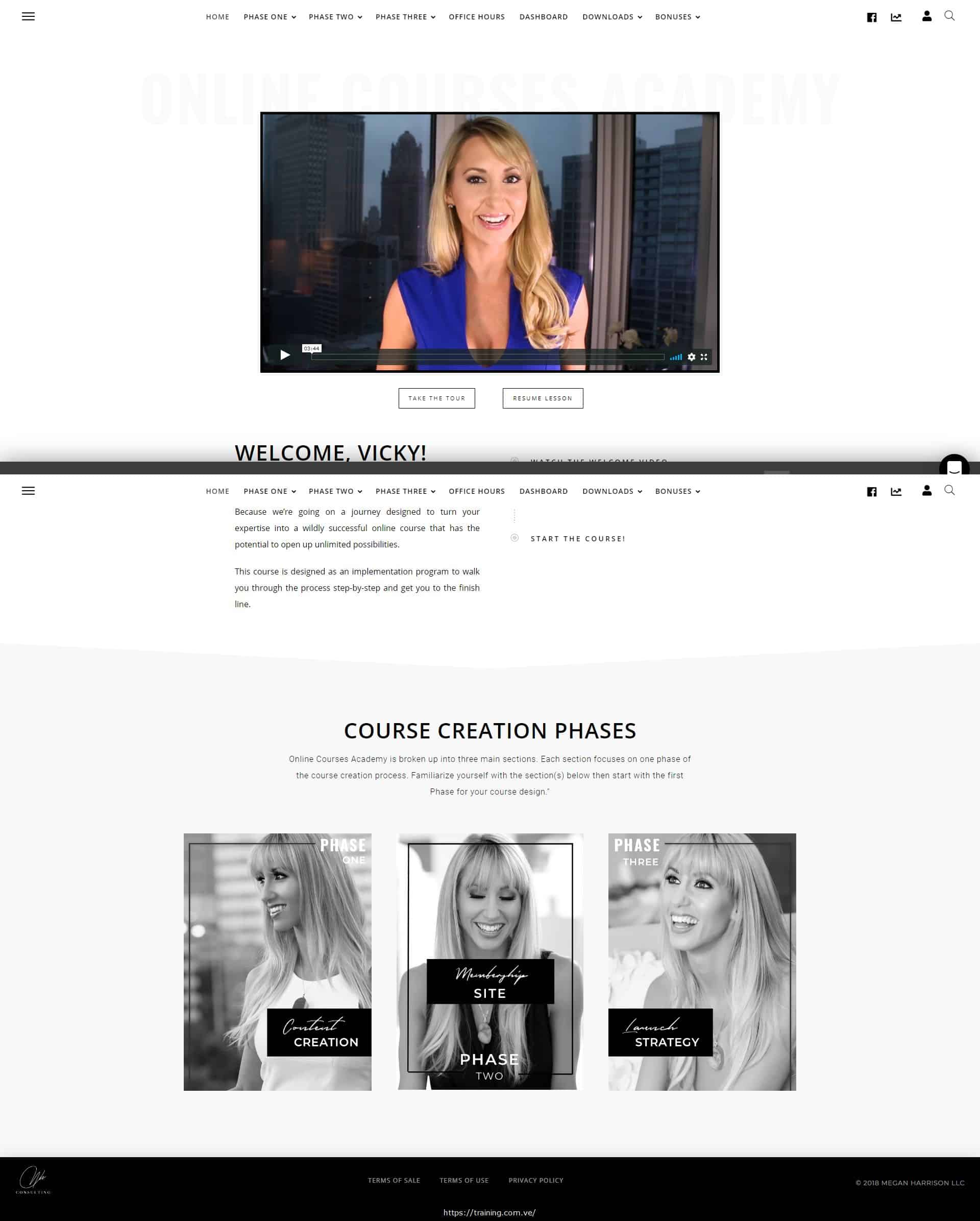 Online Course Academy by Megan K Harrison Download