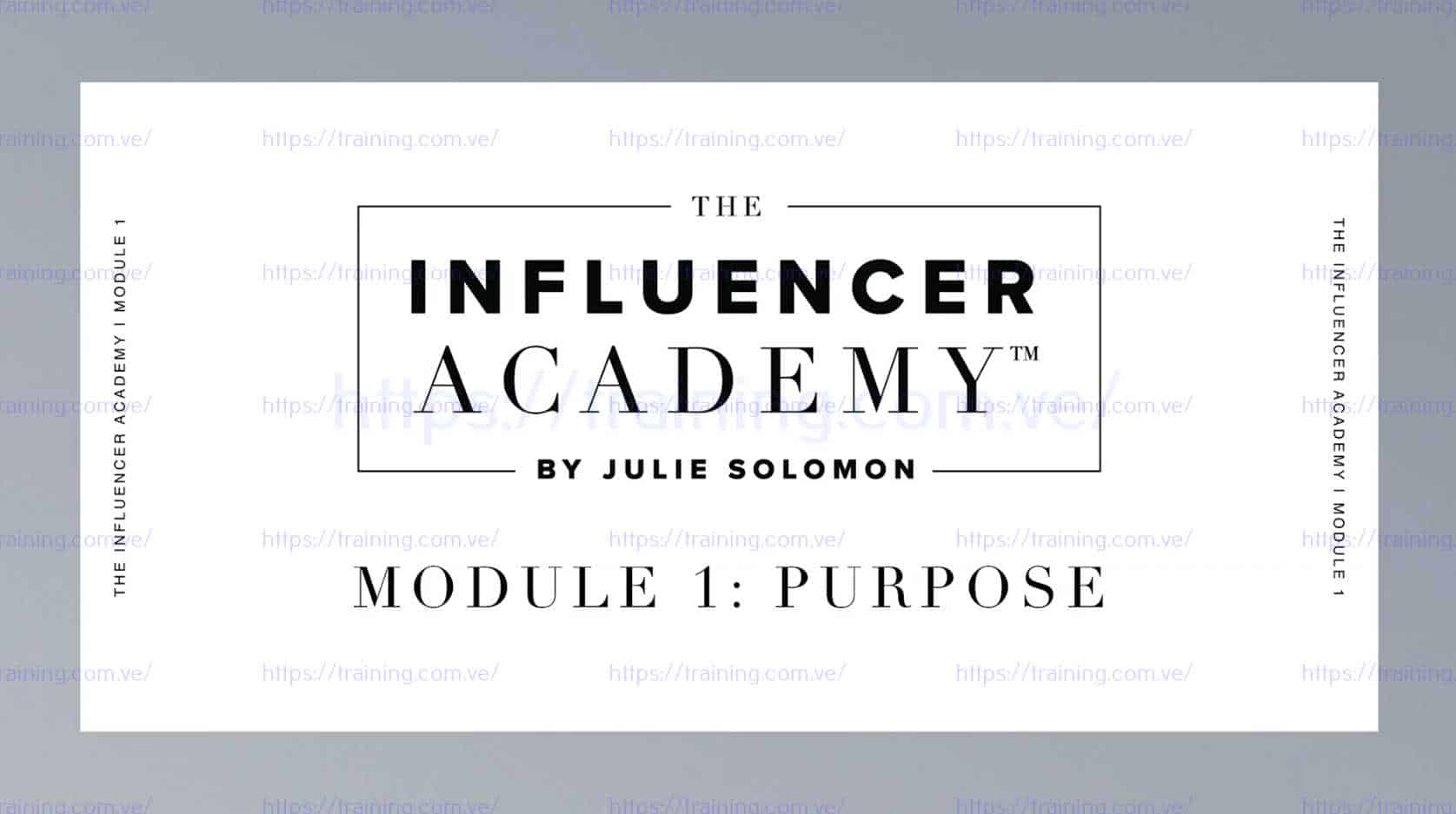 The Influencer Academy by Julie Solomon Discount